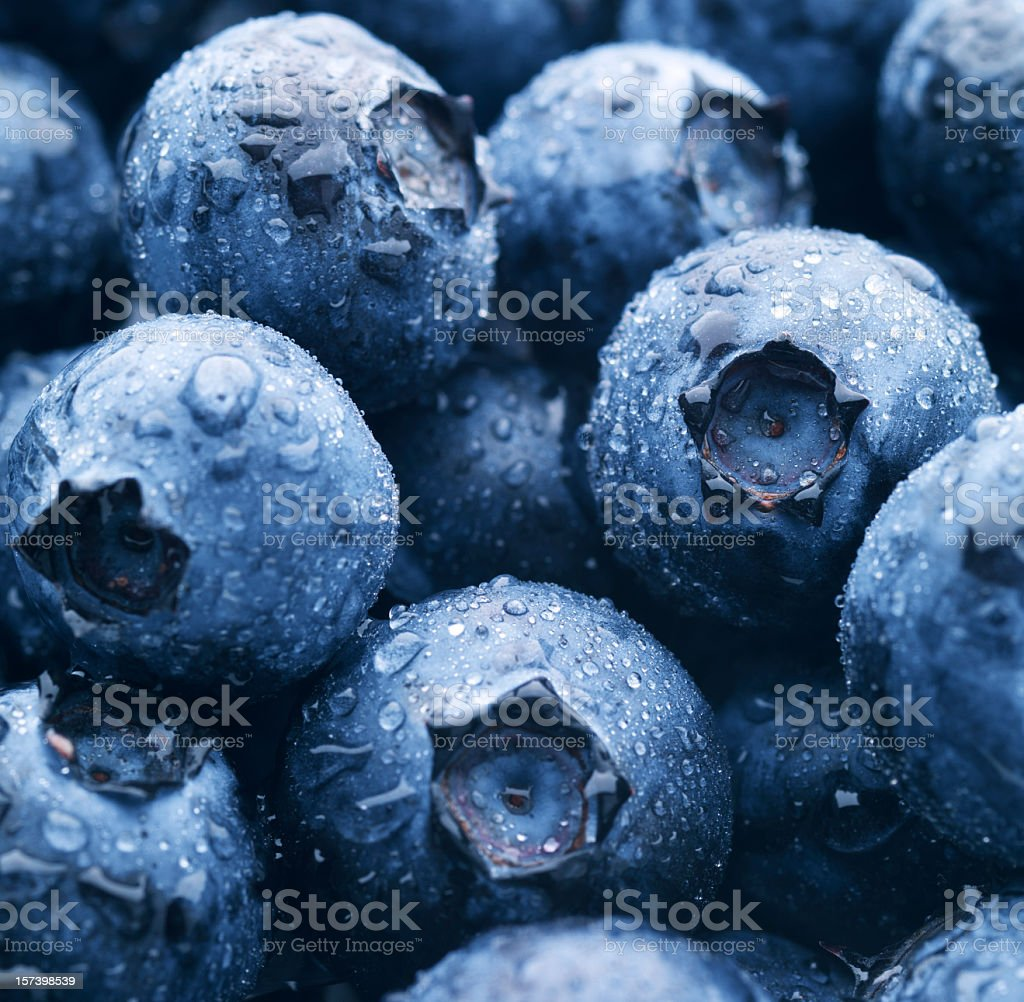 Close up of blueberries with condensation royalty-free stock photo
