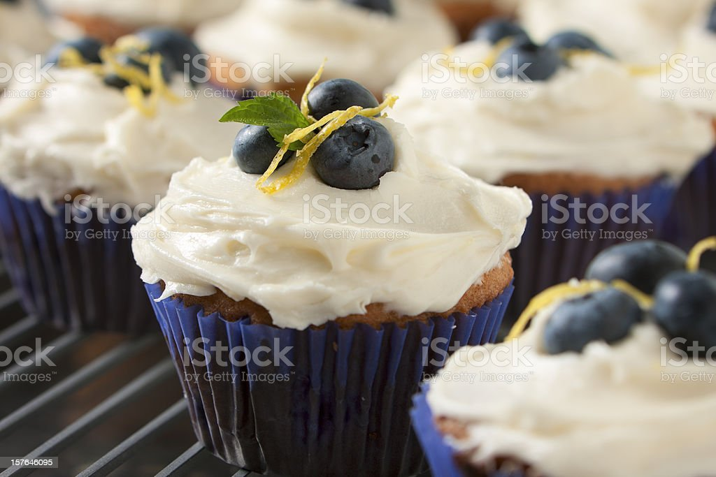 Close up of blueberry and lemon cupcakes in blue bun cases stock photo