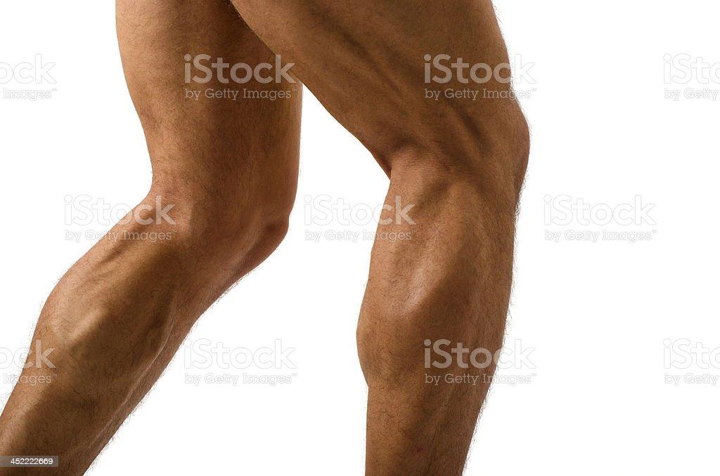 Close up of bodybuilder muscular legs stock photo