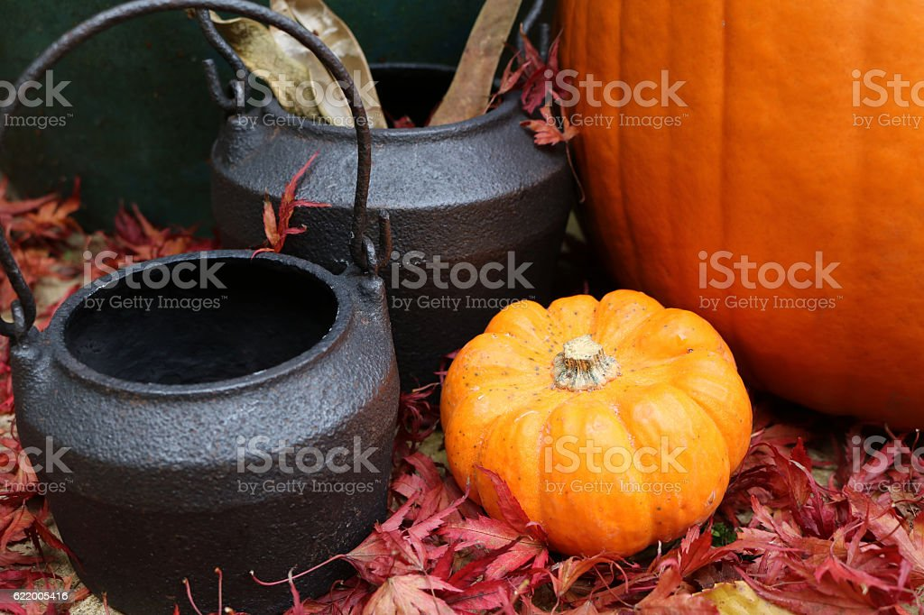 Close up of cauldrons with small pumpkin stock photo