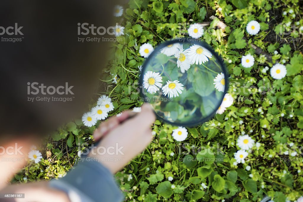 Close up of child hands using magnifier stock photo