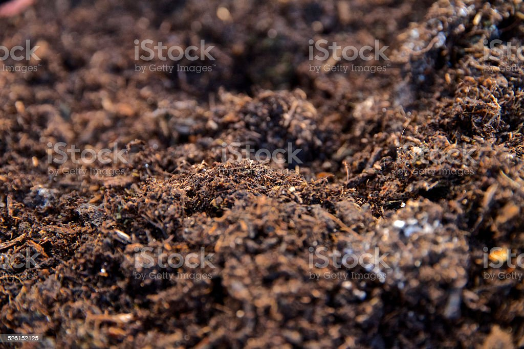 Close up  of compost soil stock photo