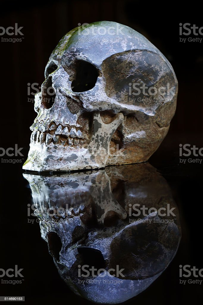 Close up of cracked and damaged human skull, reflection surface stock photo