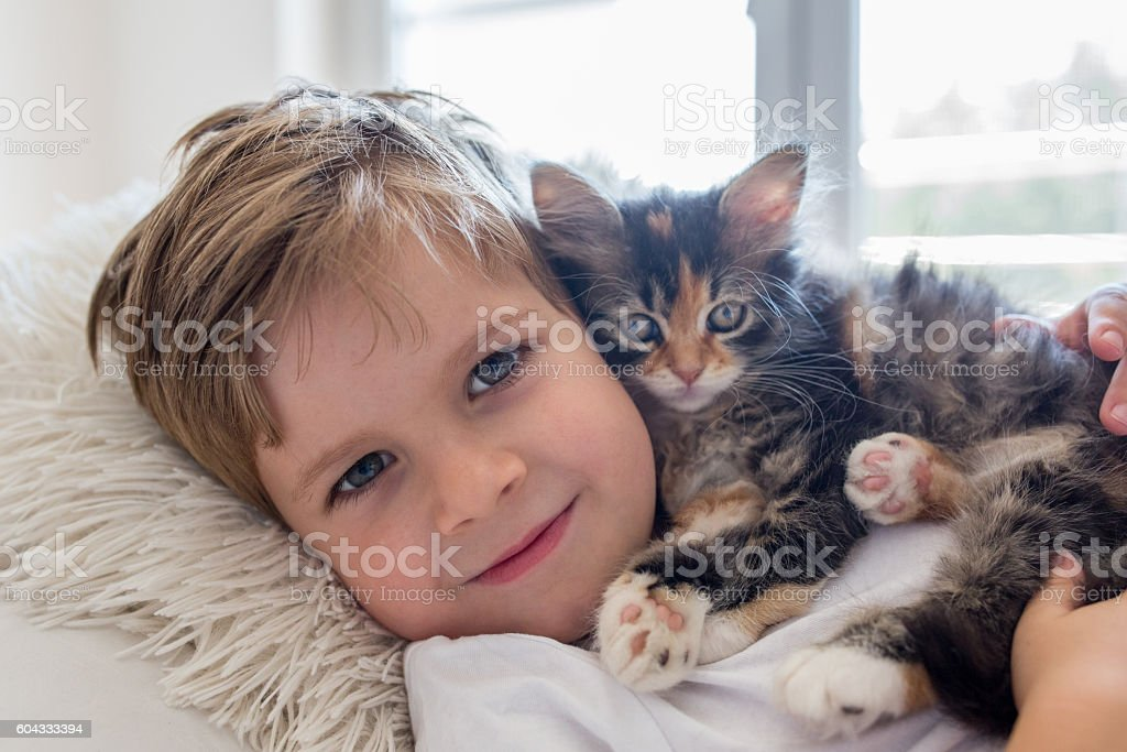 Close up of cute boy with his kitten. stock photo