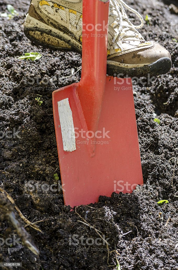 Close up of digging spring soil with sovel royalty-free stock photo
