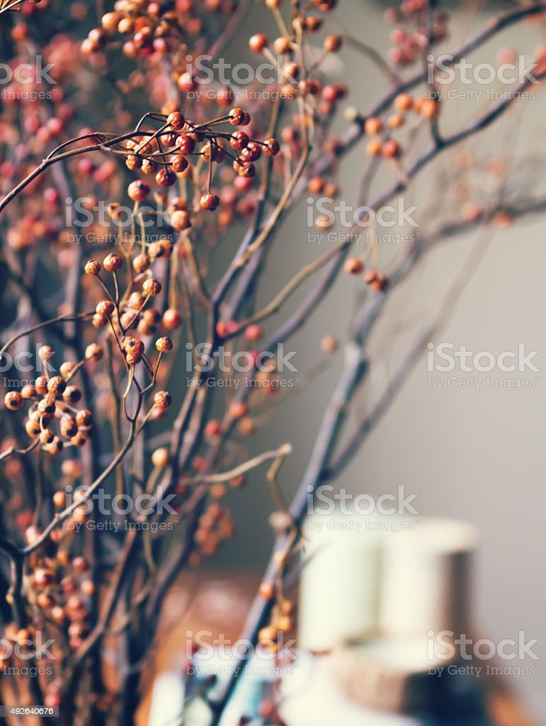 Close up of dried flowers in home interior setting stock photo