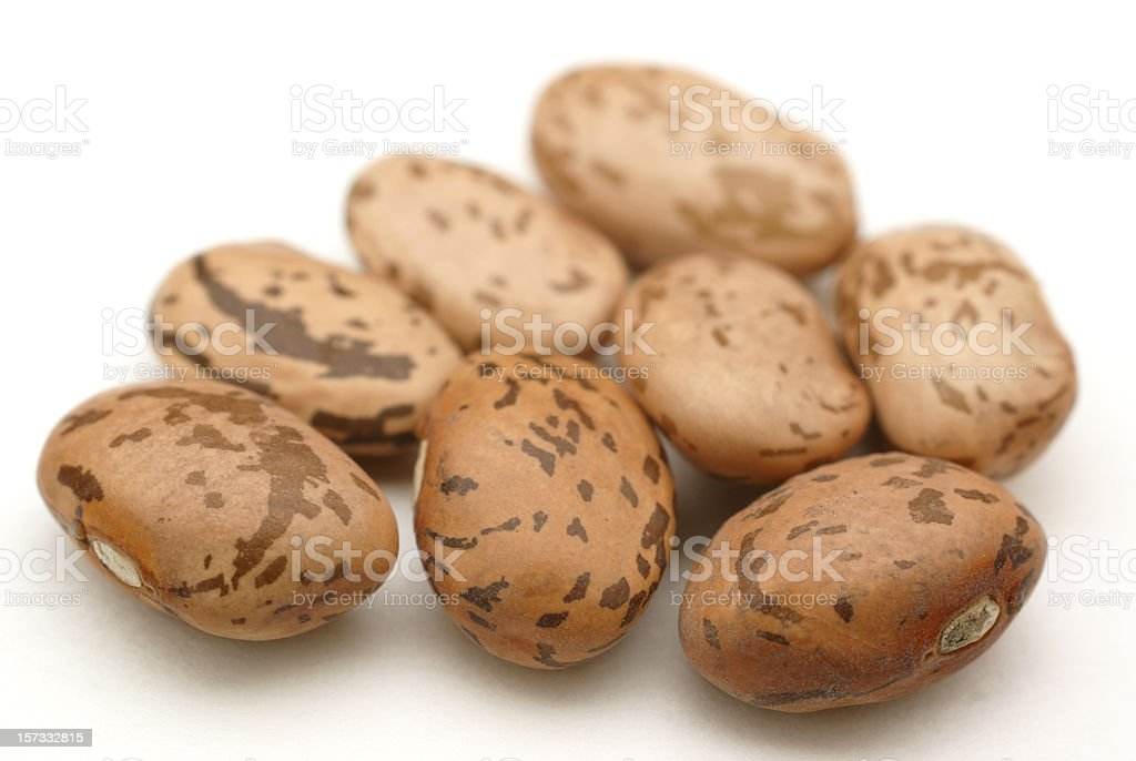 close up of eight pinto beans stock photo