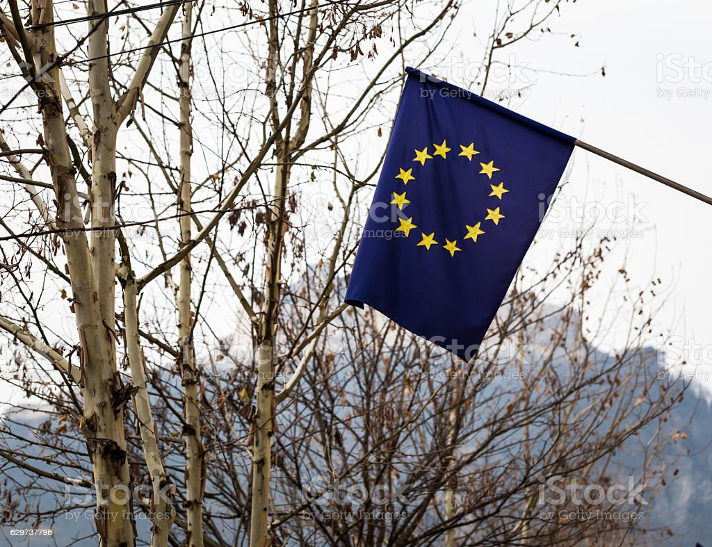 Close up of European Union flag with winter trees background stock photo