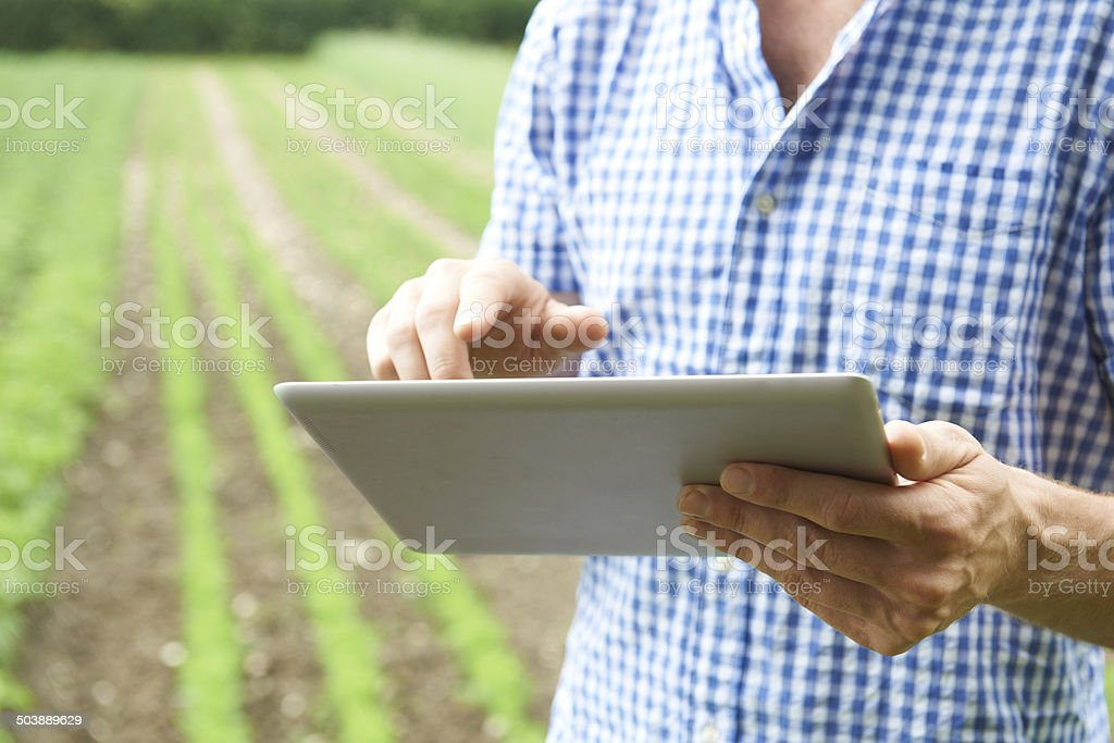 Close Up Of Farmer Using Digital Tablet On Organic Farm stock photo