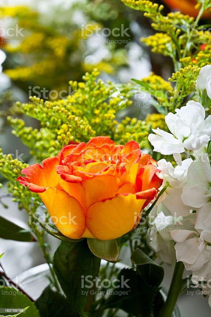 Close up of flowers in vase stock photo