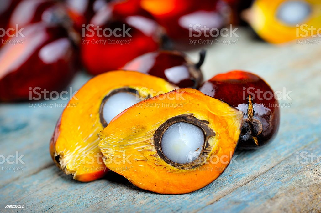 Close up of fresh oil palm fruits, selective focus. stock photo