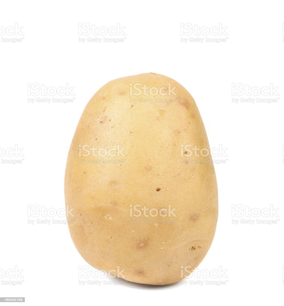 Close up of fresh potato. stock photo