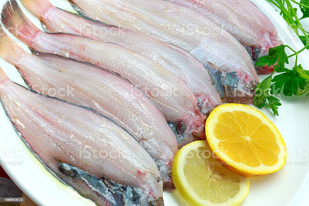 Close up of fresh raw sole fish stock photo