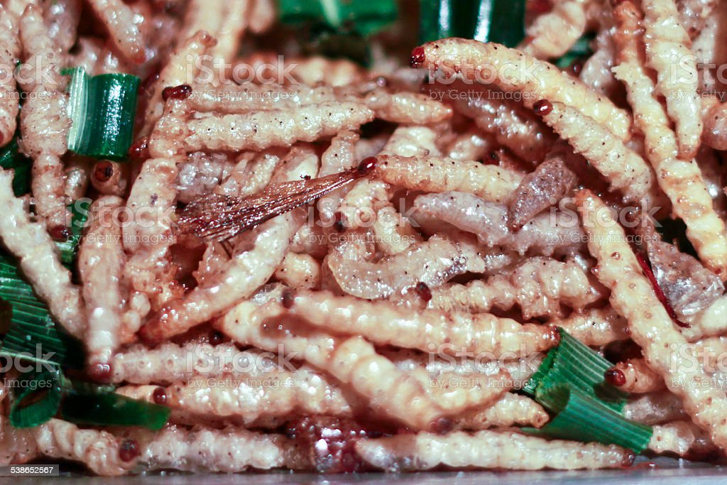 Close up of fried Worms  insects mealworms for snack stock photo