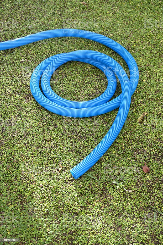 Close up of garden hose in grass stock photo