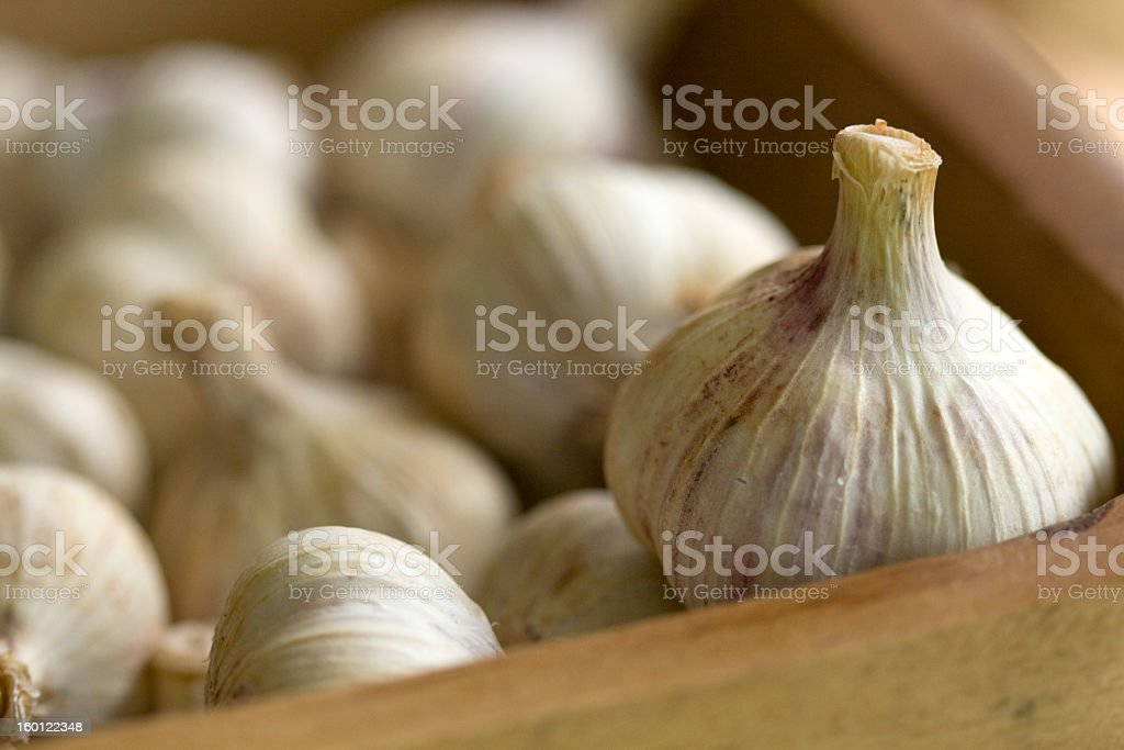 Close up of garlic bulbs in a wooden box  royalty-free stock photo