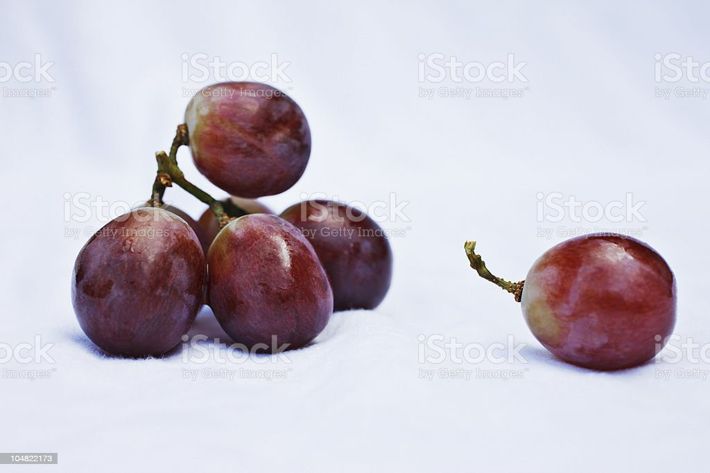 Close up of grapes stock photo