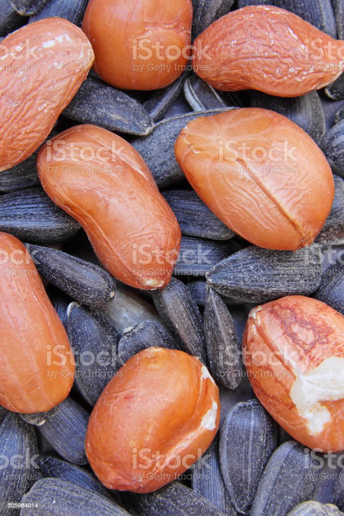 Close up of groundnuts lying on sunflower seeds stock photo