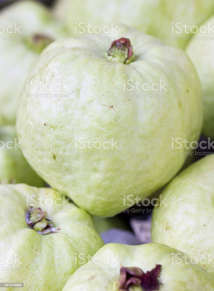Close up of guava fruits. stock photo
