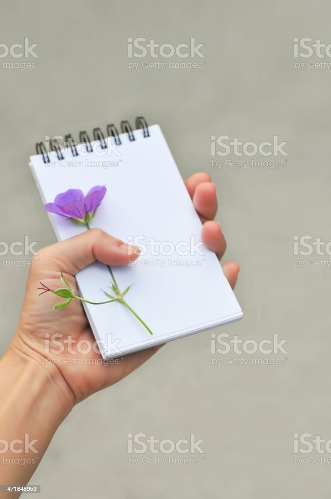 close up of hand holding blank notepad, on white background royalty-free stock photo
