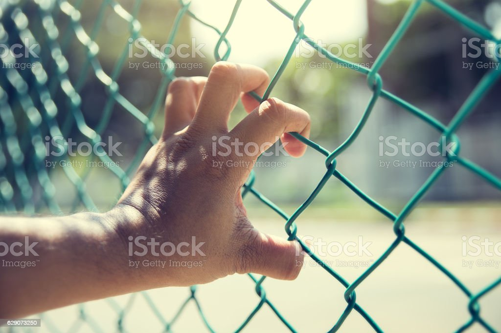 Close up of hand on chain-link fence stock photo
