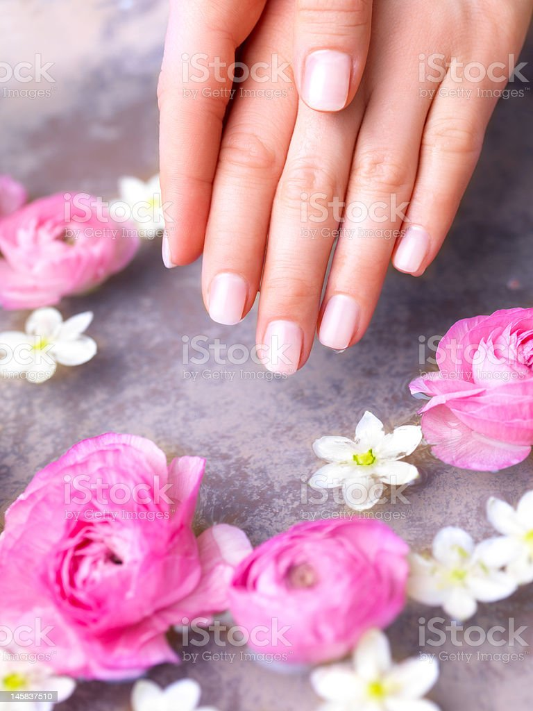 Close up of human hands with spa flowers royalty-free stock photo