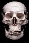 close up of human skull model