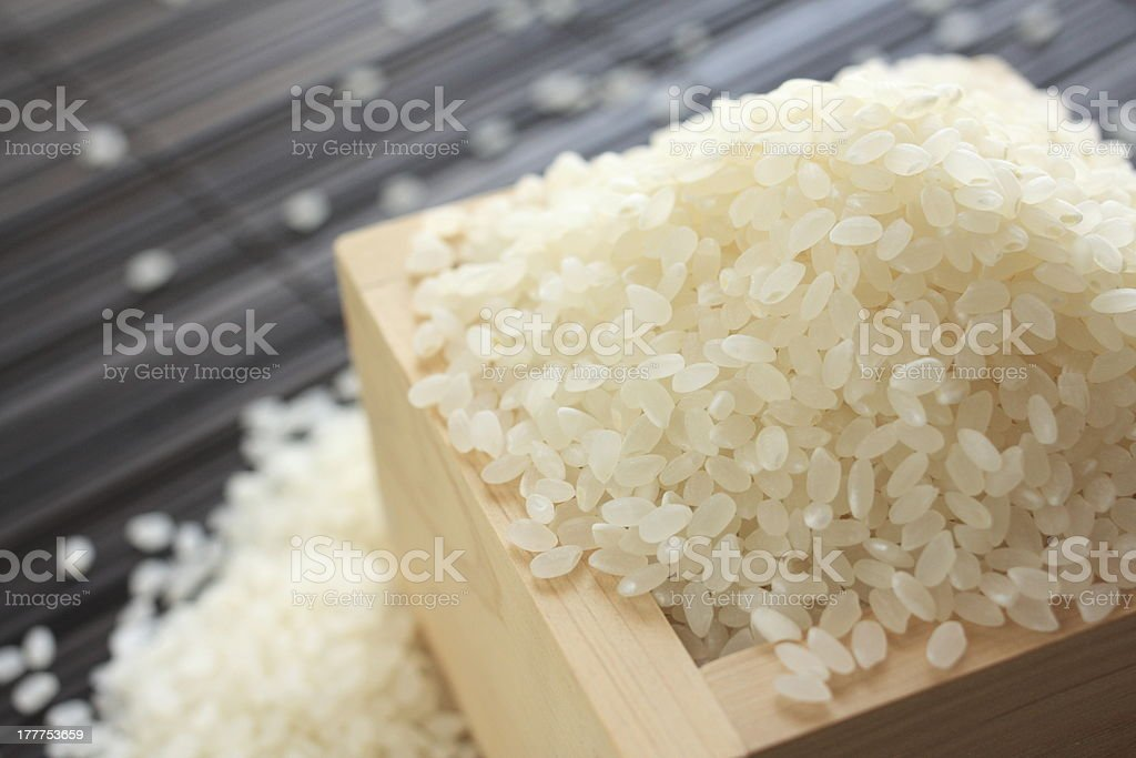 close up of japanese pearl rice stock photo