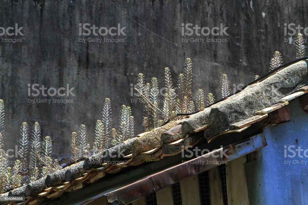 close up of Lantau Island are homes  in Tai O stock photo