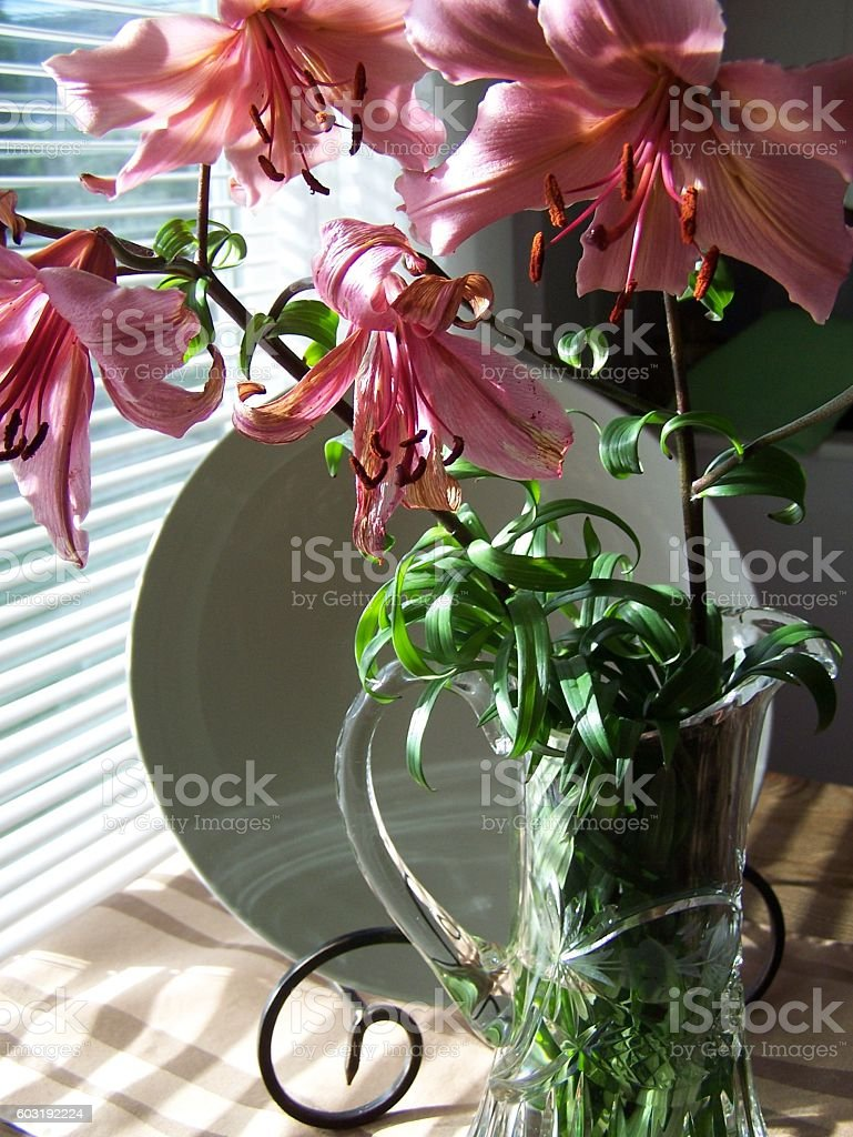 Close up of Lilies on the table stock photo