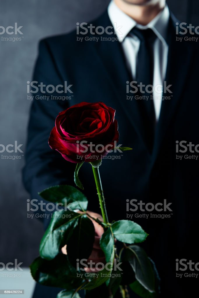 Close up of man in black suit holding red rose stock photo