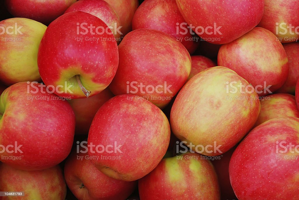 Close up of many ripe red apples stock photo
