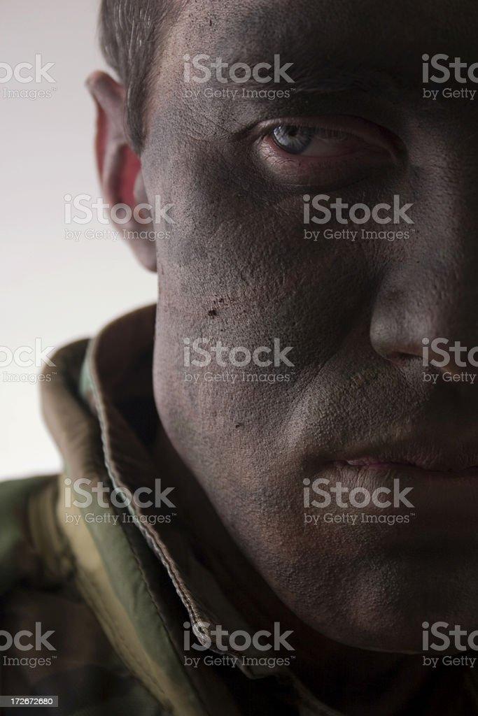 close up of marine face royalty-free stock photo