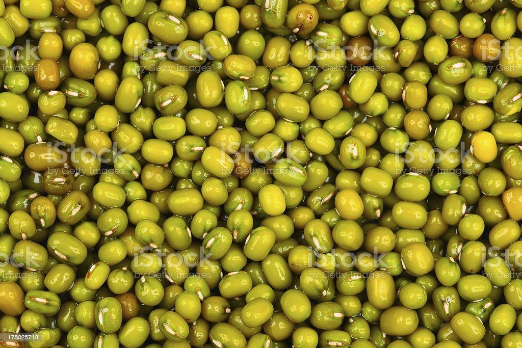 クローズアップ緑豆の背景 ロイヤリティフリーストックフォト