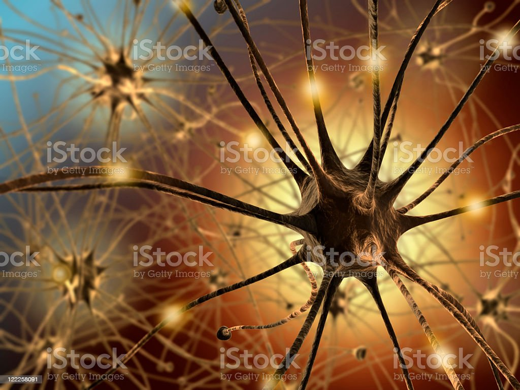 Close up of neurons within the human body royalty-free stock photo