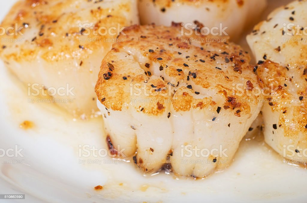 Close up of pan fried giant sea scallops stock photo
