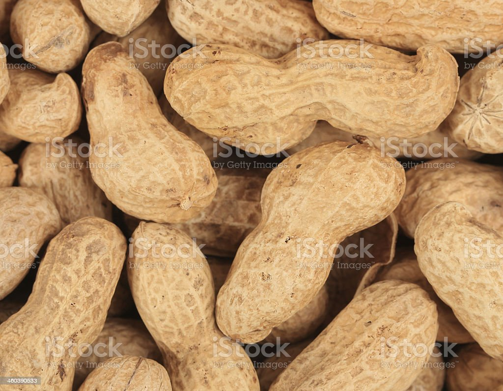 Close up of peanuts bunch. royalty-free stock photo