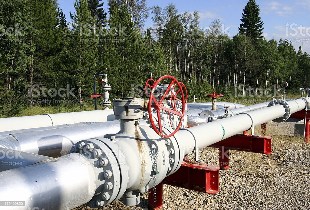 Close up of pipe log with red valve in forest stock photo