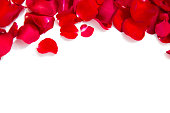 close up of red rose petals with copyspace