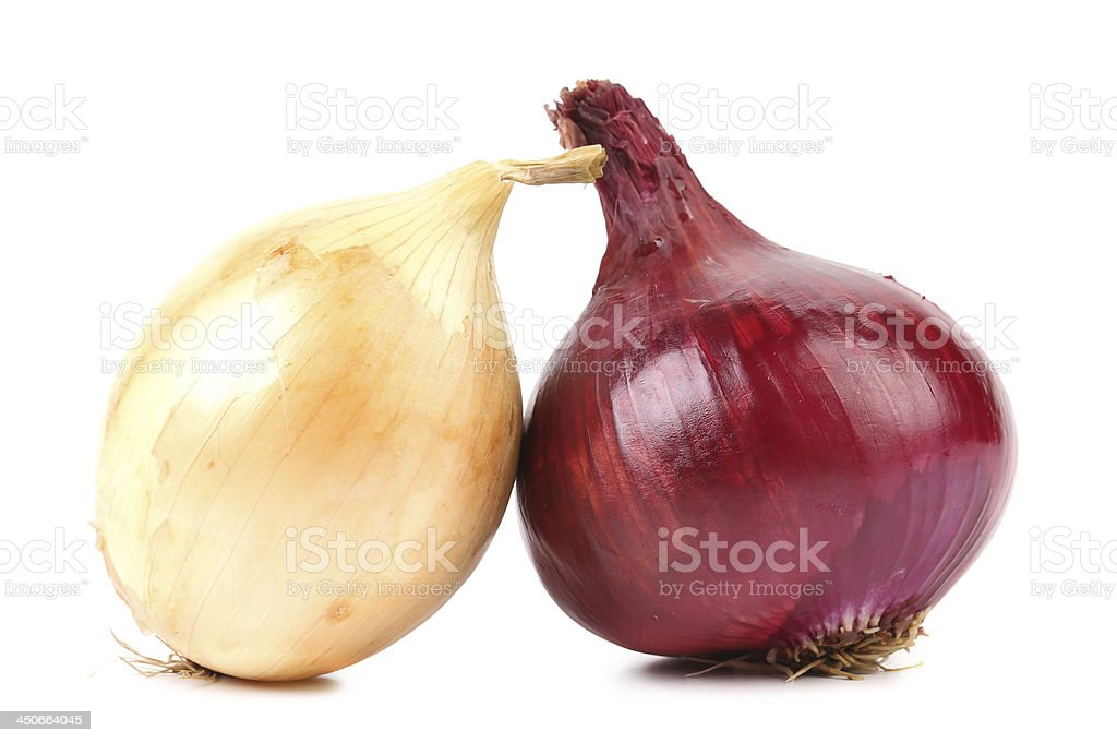 Close up of ripe onion red and white. stock photo