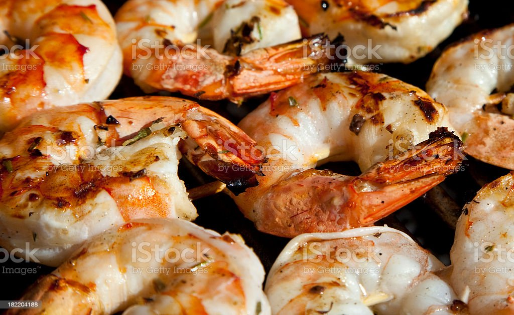Close up of rows of jumbo shrimp stock photo