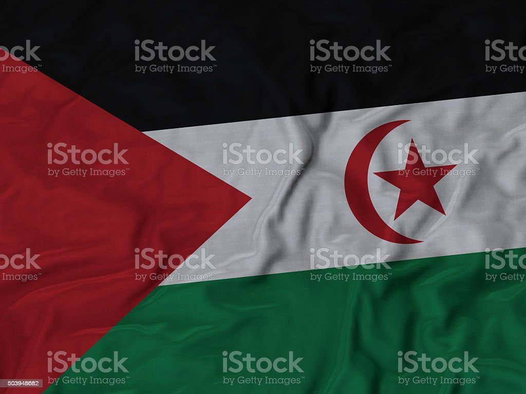 Close up of Ruffled Sahrawi Arab Democratic Republic flag stock photo