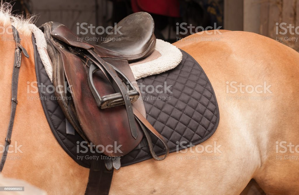 Close up of saddle on horseback, horse in stable stock photo