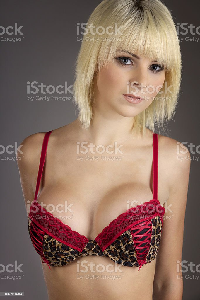 Close up of Sexy Young Woman in a Bra royalty-free stock photo