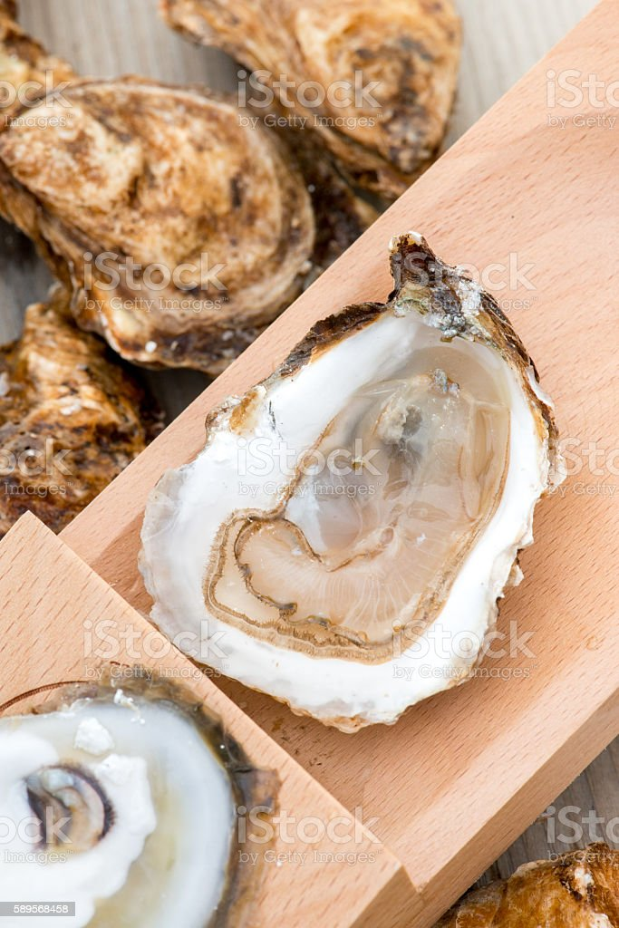 Close up of shucked oyster shucking board stock photo
