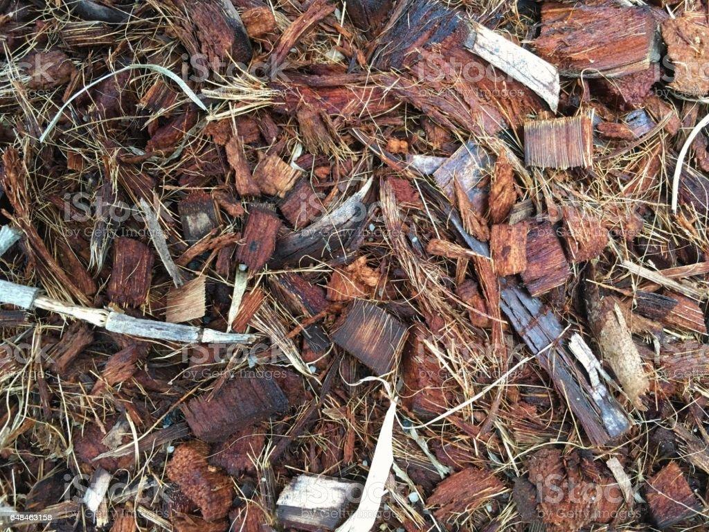 Close up of spathe fiber of coconut. Peels of coconut husk. stock photo