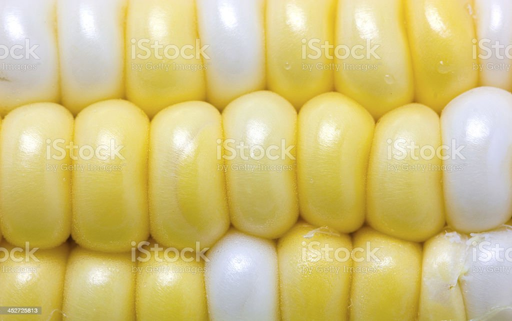 Close up of sweetcorn. stock photo