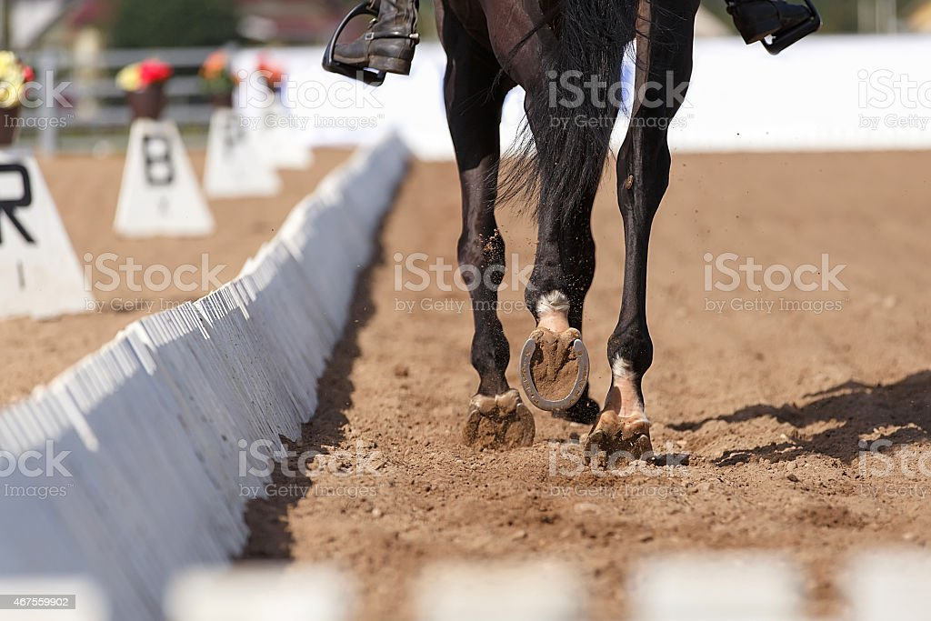 Close up of the horse shoe in motion. Dressage competition. stock photo