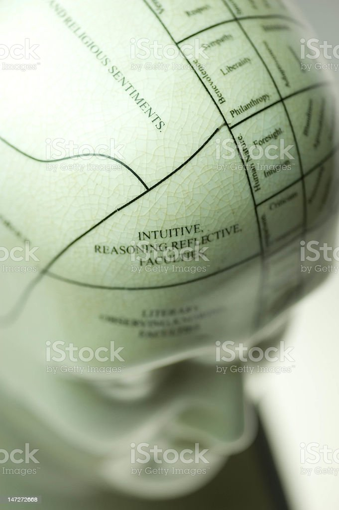 Close up of the phrenology structure stock photo