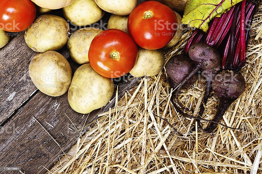 Close up of tomatoes, potatoes, and beetroot on wood royalty-free stock photo
